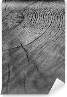 Vinyl-Fototapete Wood
