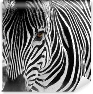 Vinyl-Fototapete Zebra