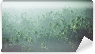 Fototapet av Vinyl Antenn av palmskog i dimman.