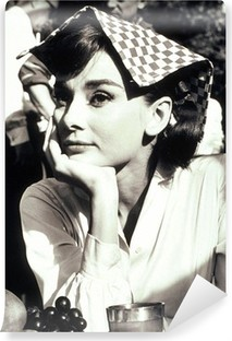 Audrey Hepburn Vinyl Fototapet