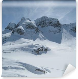 Fototapet av vinyl Berge