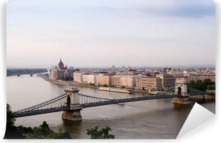 Fototapet av Vinyl Budapest, Ungern