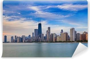 Chicago skyline Vinyl fototapet