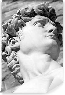 Fototapet av Vinyl Detalj av berömda italienska skulptur - David av Michelangelo, bl