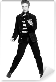 Elvis Presley Vinyl fototapet