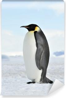 Fototapet av Vinyl Emperor Penguin