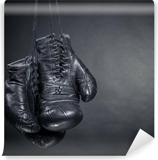 Fototapet av Vinyl Gamla boxhandskar
