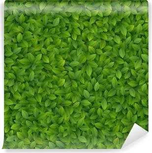 Fototapet av vinyl Grønne blader tekstur.
