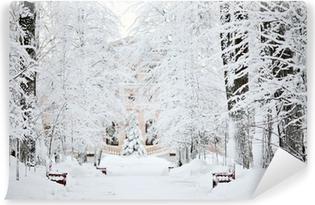 Fototapet av Vinyl Kall vinter skog landskap snö