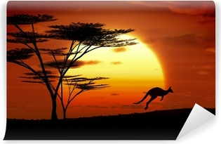 Fototapet av Vinyl Känguru solnedgång australien