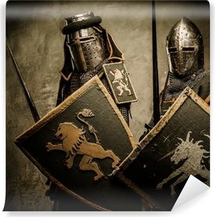 Middelalderlige riddere på grå baggrund. Vinyl fototapet