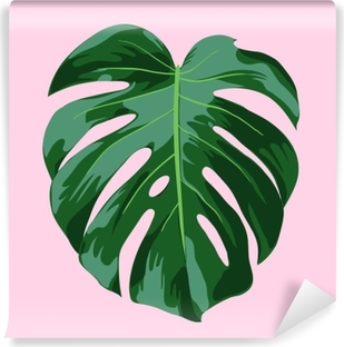 Fototapet av Vinyl Monstera tropisk blad illustration