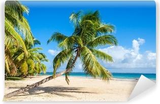 Fototapet av Vinyl Palm beach