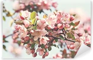 Pink æbleblomster i foråret Vinyl fototapet