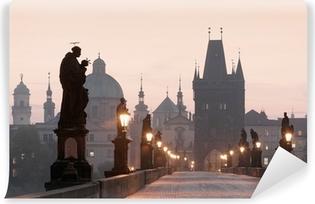 Fototapet av Vinyl Prag - charles bridge