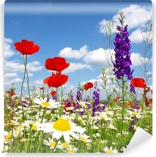 Rød vallmo og vilde blomster Vinyl fototapet