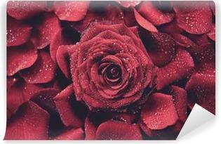 Røde roser baggrund Vinyl fototapet