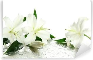 Smuk lilje, isoleret på hvidt Vinyl fototapet