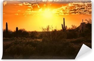 Smuk solnedgang udsigt over Arizona ørkenen med kaktus Vinyl fototapet