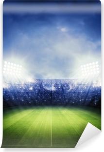 Stadium Vinyl fototapet