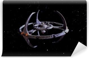 Fototapet av Vinyl Star Trek