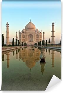 Fototapet av vinyl Taj Mahal i India