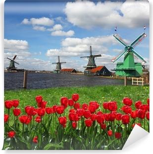 Fototapet av Vinyl Traditionella holländska väderkvarnar med röda tulpaner, Amsterdam, Holland