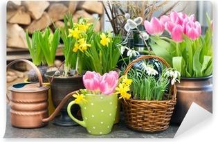 Fototapet av Vinyl Tulpaner, snödroppar och Narcissus blommar