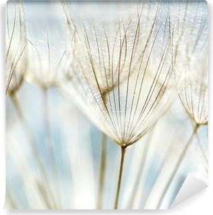Fototapeta winylowa Abstrakcyjne tło kwiat mniszka
