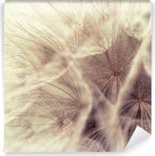 Fototapeta winylowa Abstrakcyjny zbliżenie z salsify łące