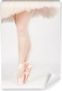 dbf0407c30c Vinylová fototapeta Baletní tanečník stojí na nohou při tanci uměleckou  conversi