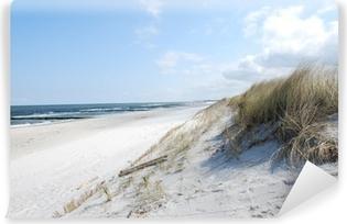 Vinylová Fototapeta Beach duny