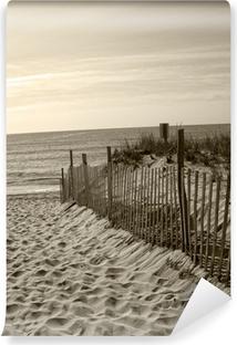 Vinylová Fototapeta Beach plot duny oceánu písku