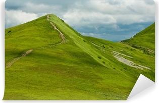 Vinylová Fototapeta Bieszczady Mountains na jaře