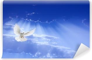 Cuadro En Lienzo Paloma Blanca Volando En El Cielo Pixers