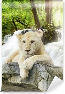 Vinylová Fototapeta Bílého lva