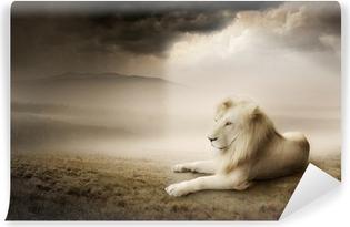 Vinylová Fototapeta Bílý lev při západu slunce