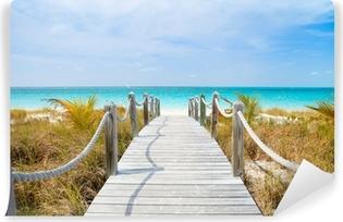 Vinylová Fototapeta Caribbean beach