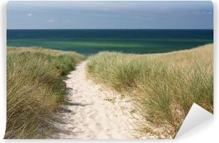 Vinylová Fototapeta Cesta na pláž přes písečné duny v Kampen na ostrově Sylt v Severním moři