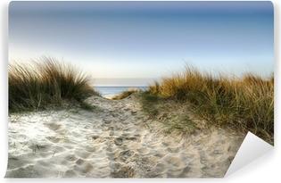Vinylová Fototapeta Cesta přes duny