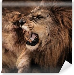 Vinylová Fototapeta Close-up shot řvoucí lev a lvice