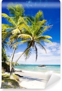 Vinylová Fototapeta Cumana Bay, Trinidad