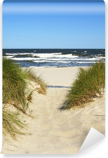 Fototapeta winylowa Droga do plaży