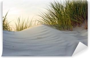 Vinylová Fototapeta Dune ve večerním světle