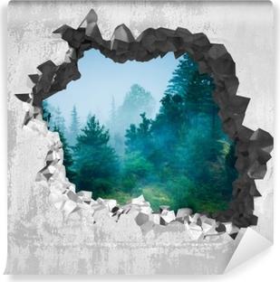 Fototapeta winylowa Dziura w ścianie - Mgła