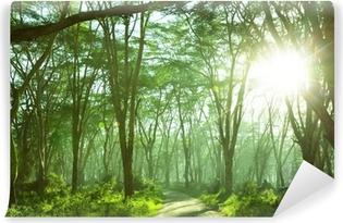 Vinylová Fototapeta Džungle