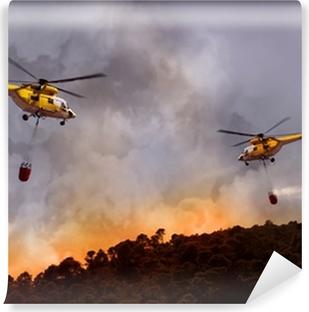 Vinylová Fototapeta Forest Fire