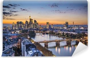 Vinylová Fototapeta Frankfurt nad Mohanem, Německo Financial District Skyline