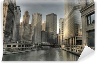 Vinylová Fototapeta HDR Downtown Chicago