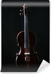 Vinylová Fototapeta Houslový orchestr hudební nástroje